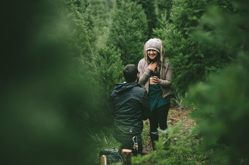 Image 8 of Adorable Marriage Proposal at a Christmas Tree Farm