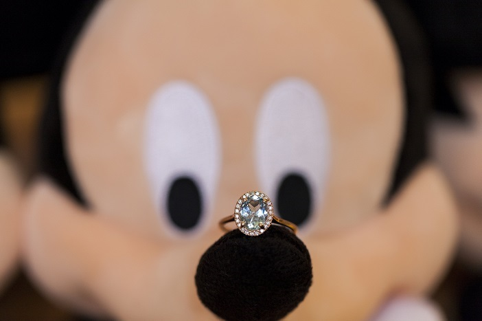 Disneyland Scavenger Hunt Proposal (8)