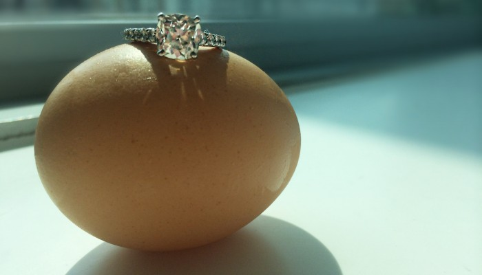 Best Proposal for a Foodie