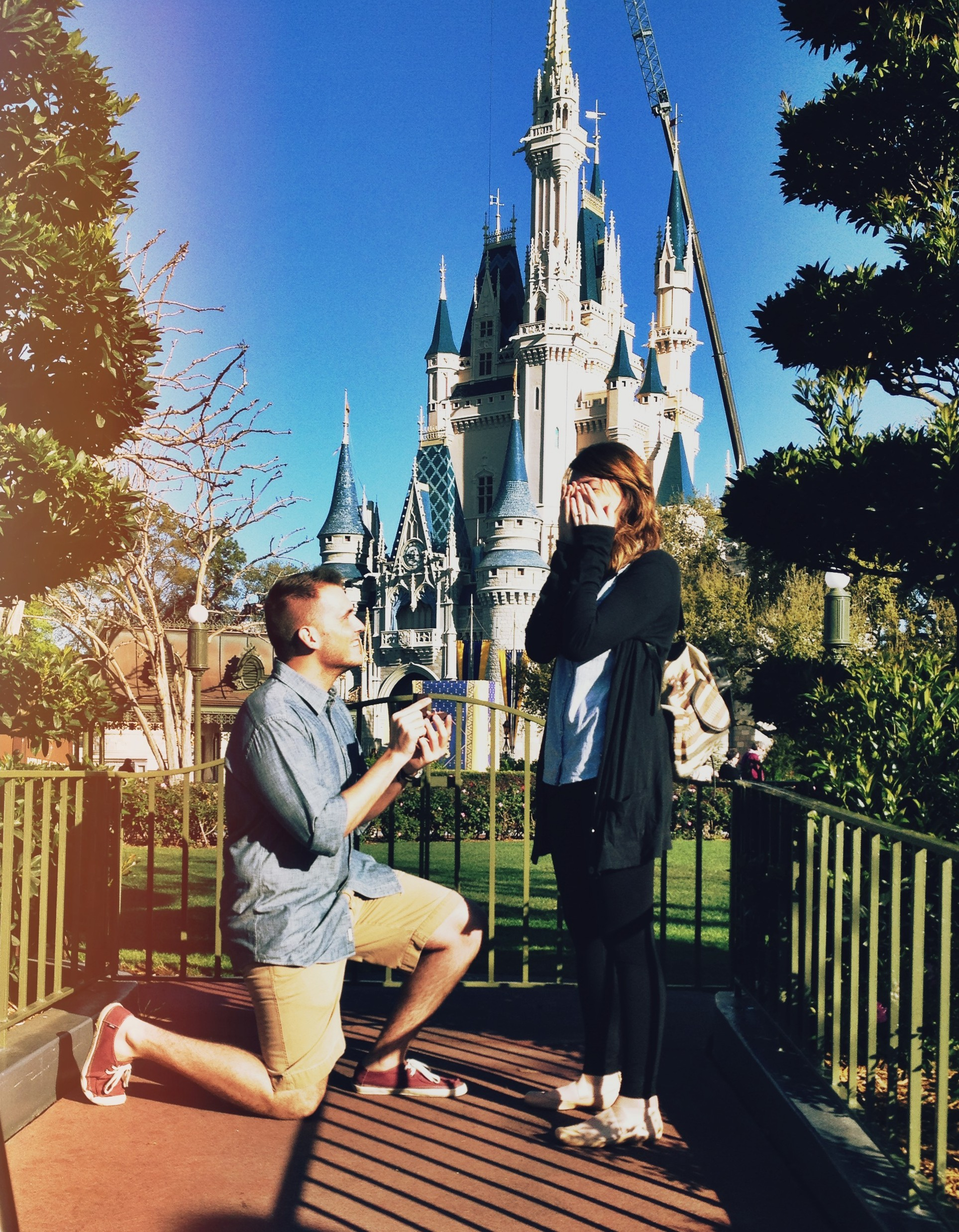 Proposal at Disney
