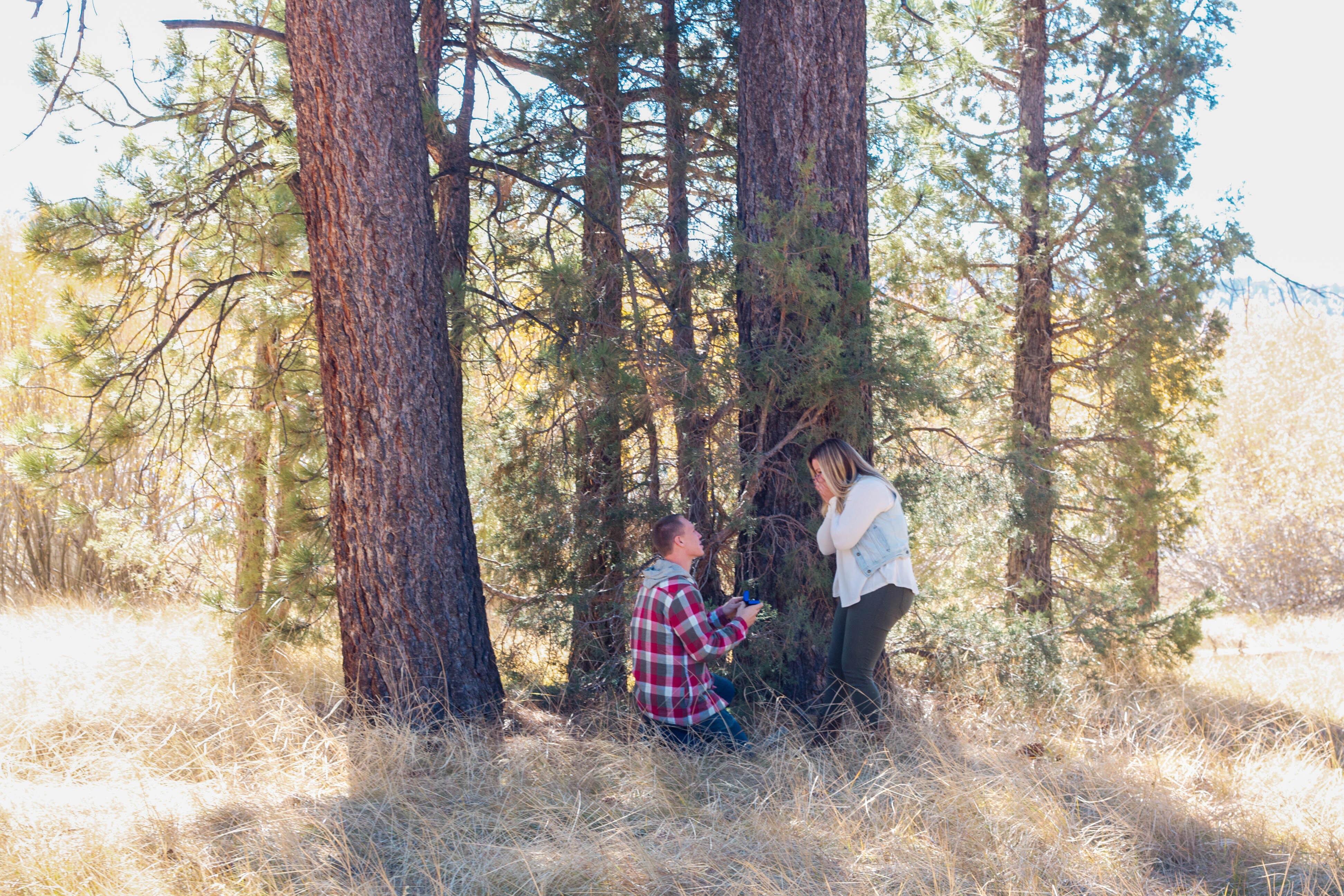 Proposal at Big Bear Mountain