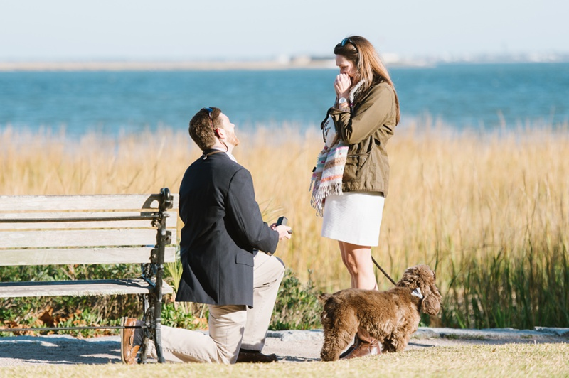 Proposal in Charleston, South Carolina