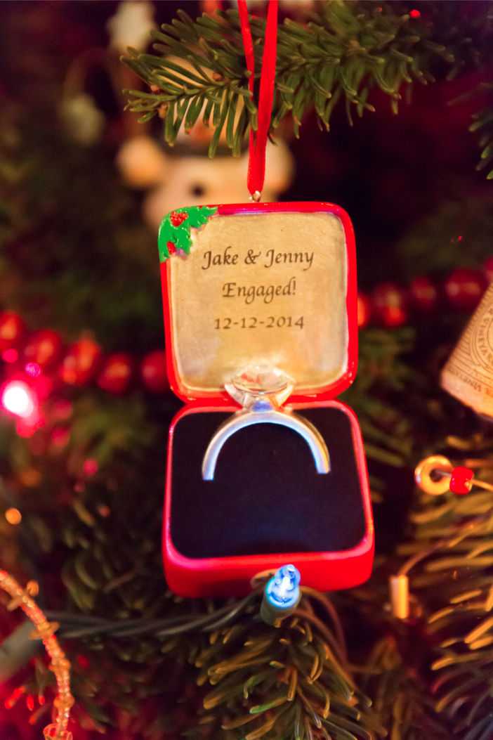 christmas lights marriage proposal-0015