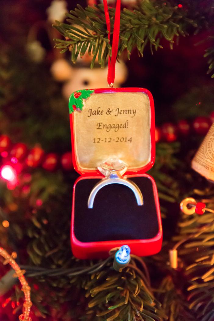 Image 10 of Jenny and Jake's Christmas Lights Proposal