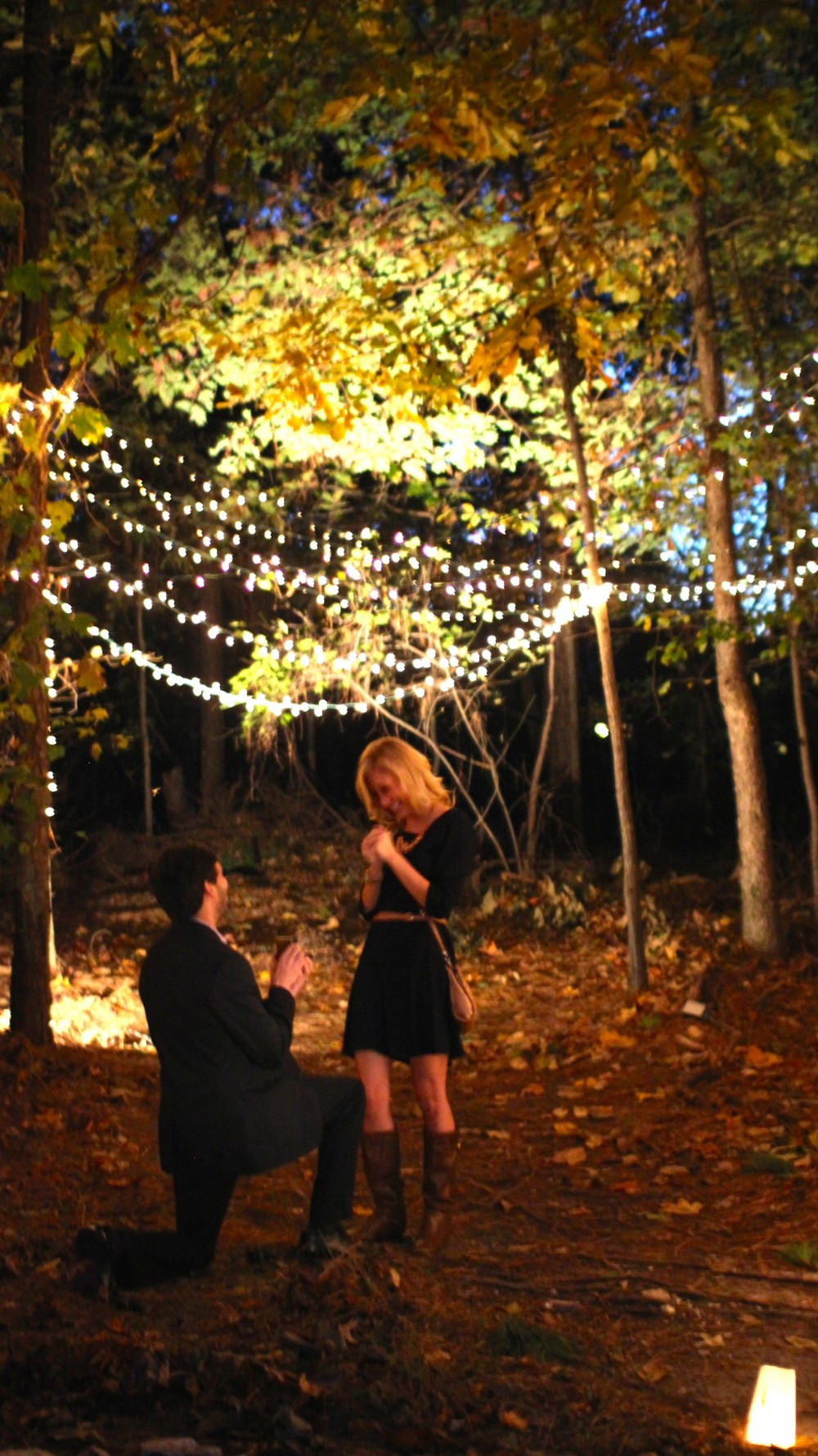 Image 8 of Carleigh and Paul's Magical Proposal