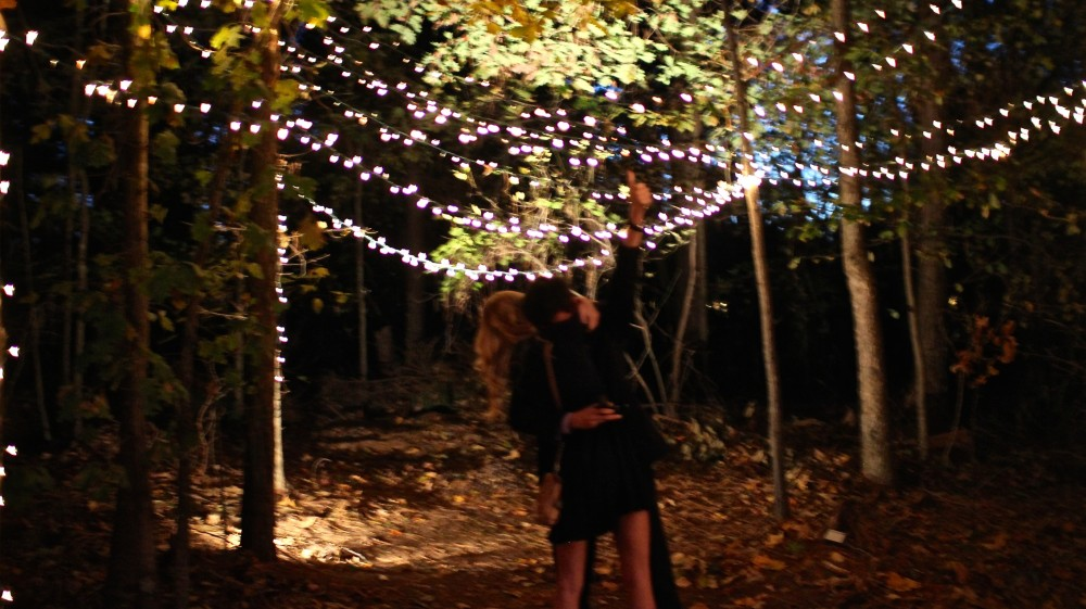 Image 9 of Carleigh and Paul's Magical Proposal