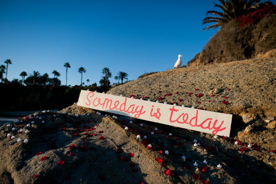 Laguna Beach Proposal (10)