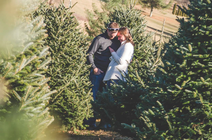 christmas tree marriage proposal 3