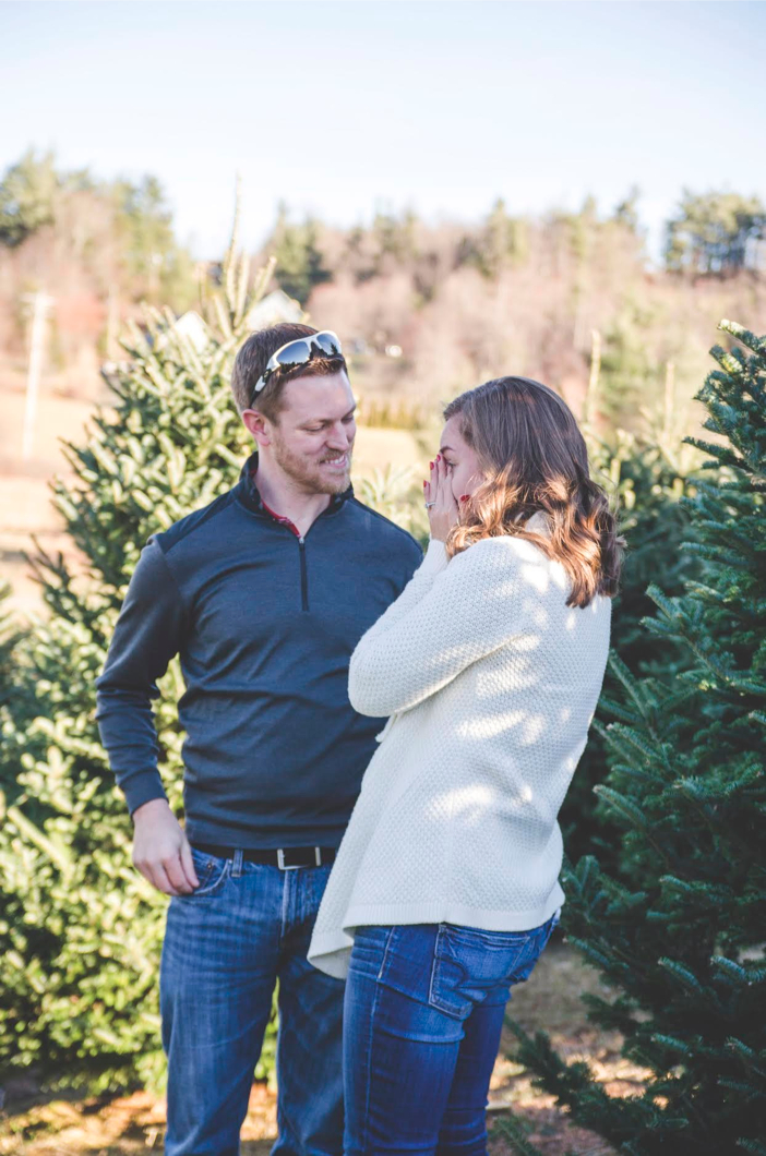 christmas tree marriage proposal 4