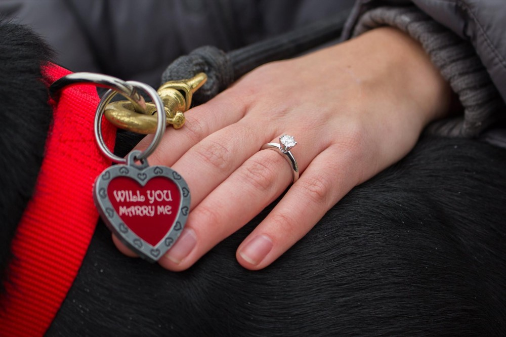 Image 2 of Kelsey and Tyler's Dog Collar Proposal
