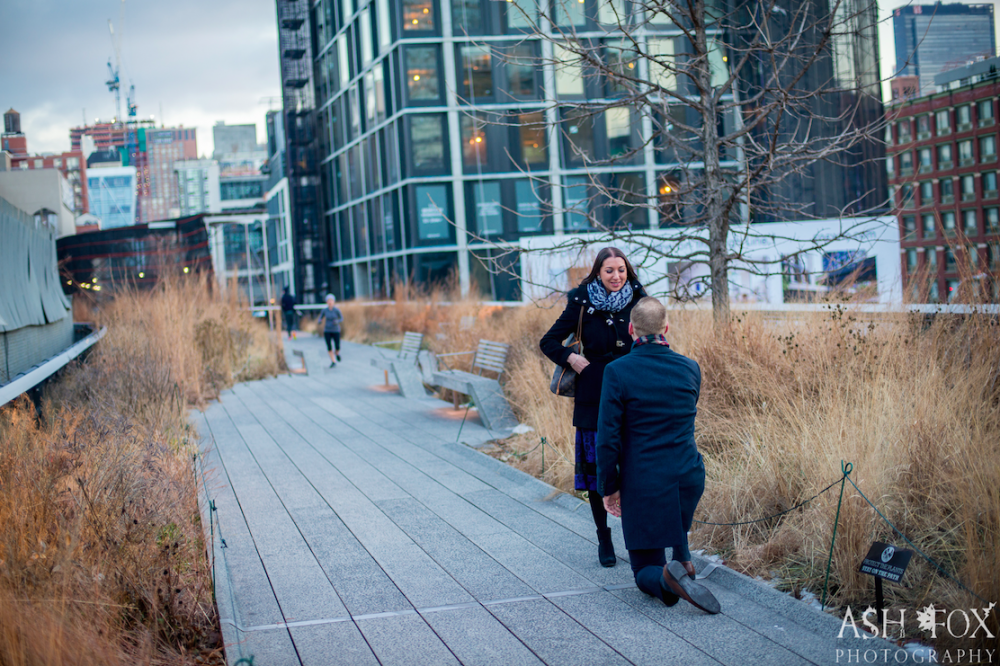 Image 3 of Tina and Peter's Highline Proposal in New York City