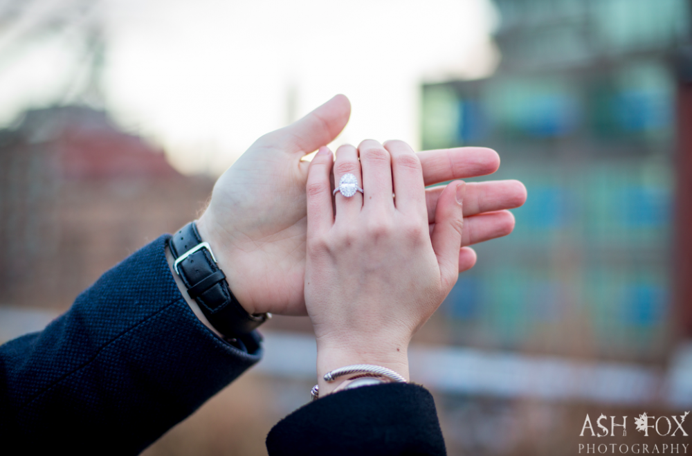 Image 5 of Tina and Peter's Highline Proposal in New York City