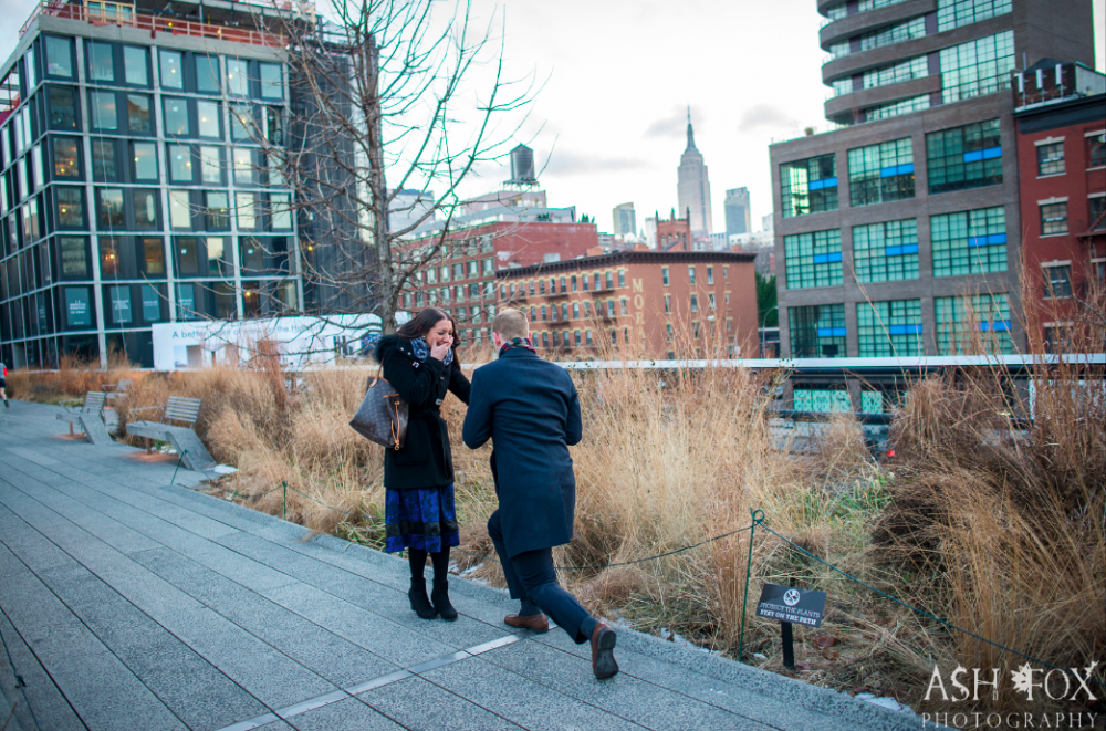 Image 2 of Tina and Peter's Highline Proposal in New York City