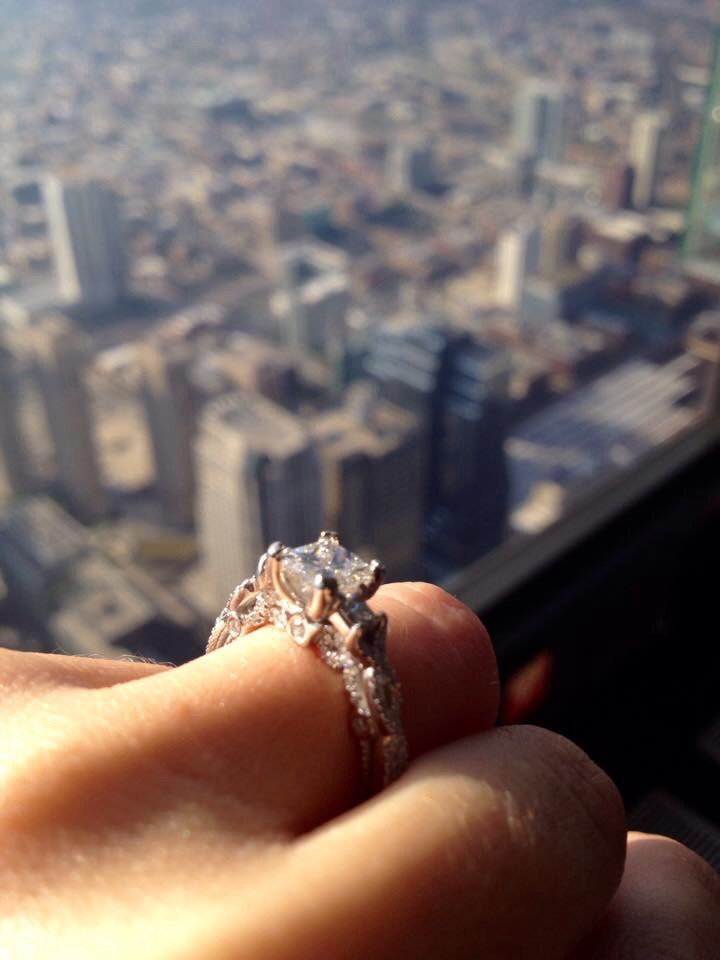 Image 3 of Erica and Joe's Sears Tower Proposal