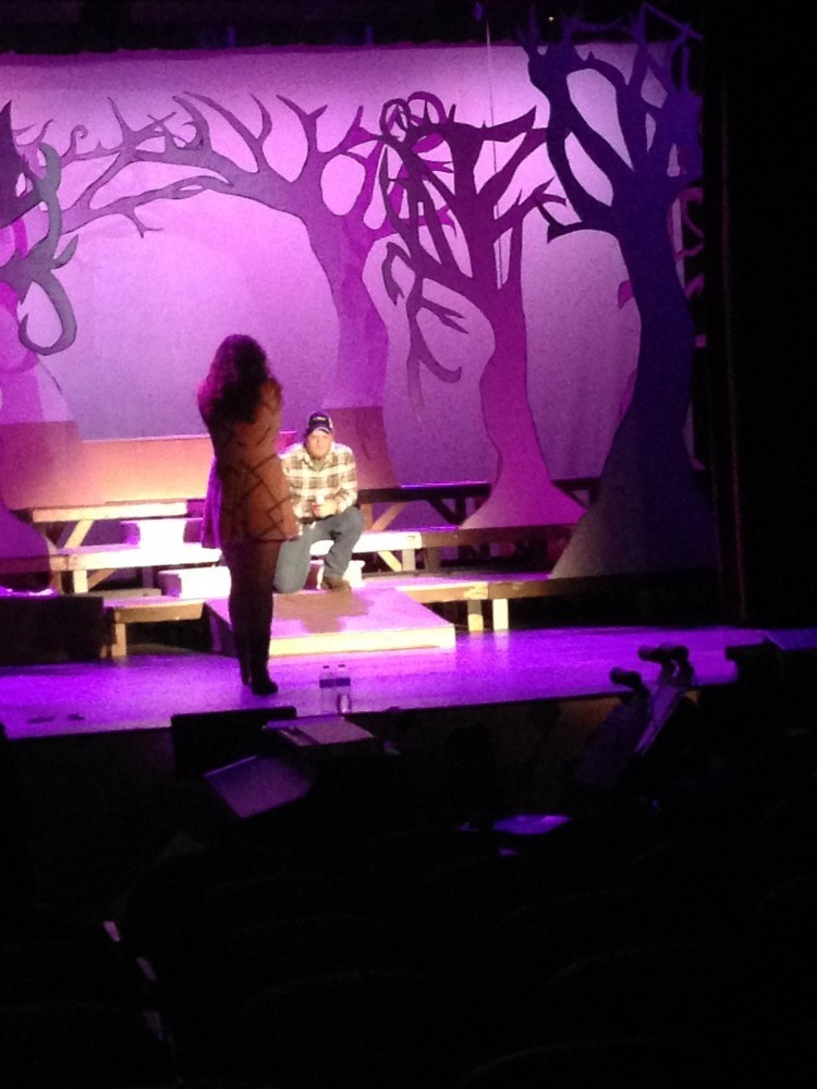 Image 8 of Lindsey and Kyle's High School Theater Proposal