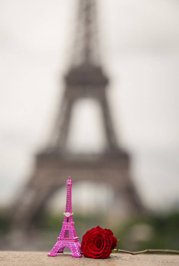 Paris Eiffel Tower Proposal (5)