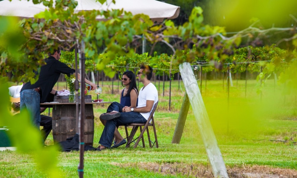 Image 3 of Priyanka and Amar's Beautiful Vineyard Proposal