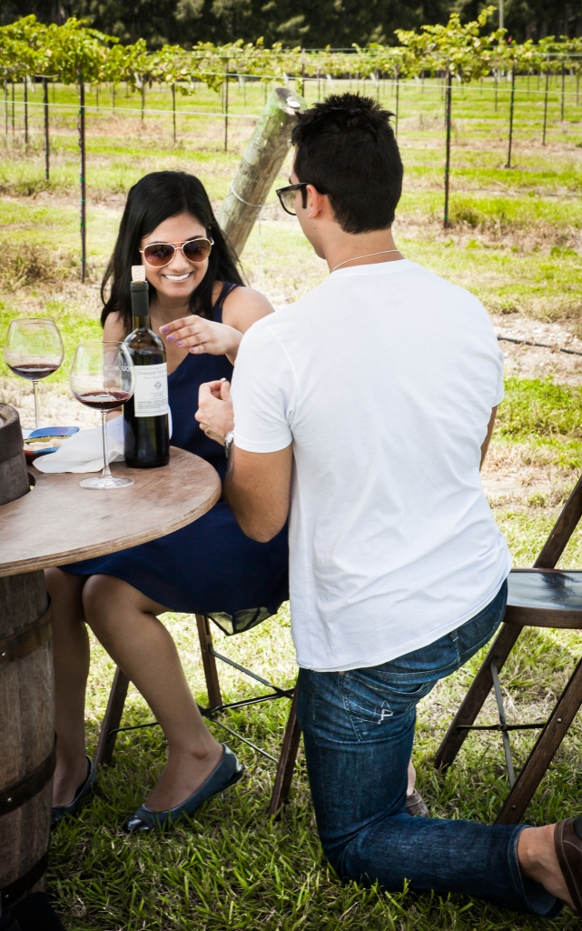 Image 7 of Priyanka and Amar's Beautiful Vineyard Proposal