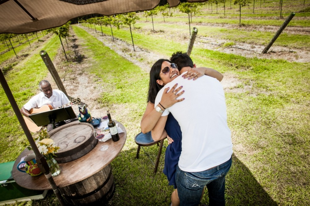 Image 8 of Priyanka and Amar's Beautiful Vineyard Proposal