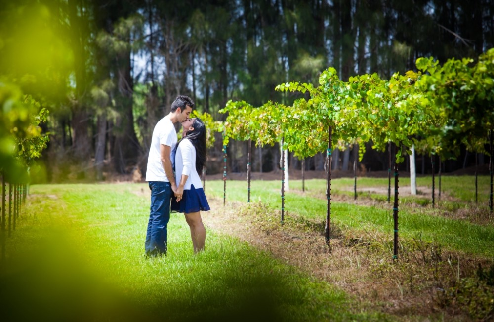 Image 1 of Priyanka and Amar's Beautiful Vineyard Proposal
