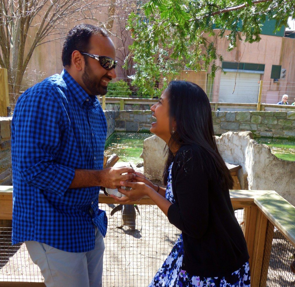 Image 4 of Jill and Vik's Proposal at the Philadelphia Zoo