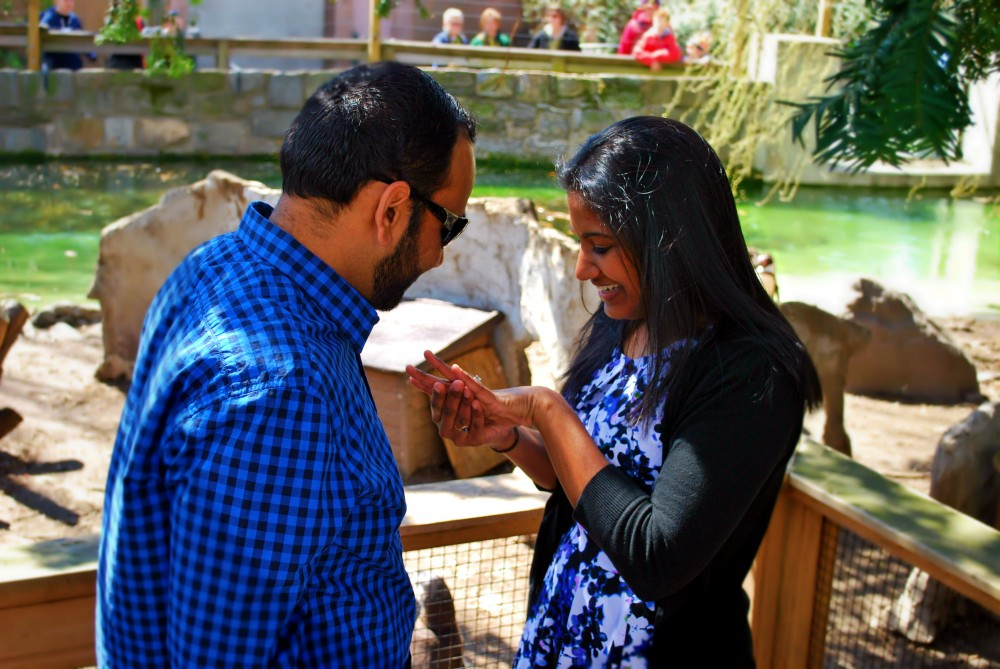 Image 5 of Jill and Vik's Proposal at the Philadelphia Zoo