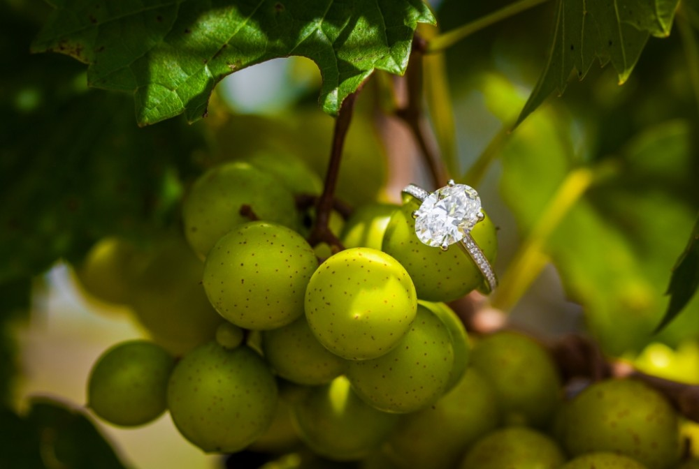 Image 9 of Priyanka and Amar's Beautiful Vineyard Proposal