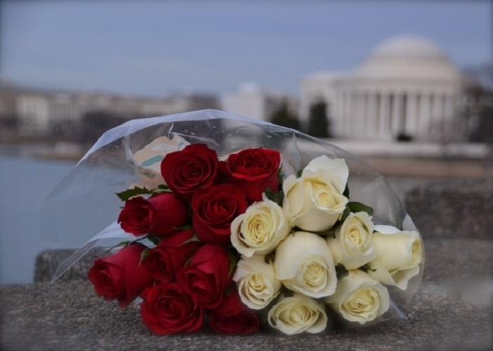 Jefferson Memorial Proposal (1)