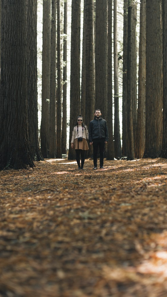 Image 3 of Chantelle and Aleks' Proposal in Beech Forest