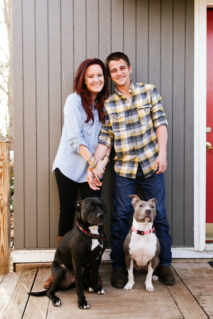 Pit bull photo shoot proposal_1