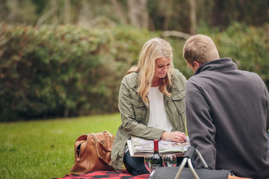 picnic proposal ideas24_low