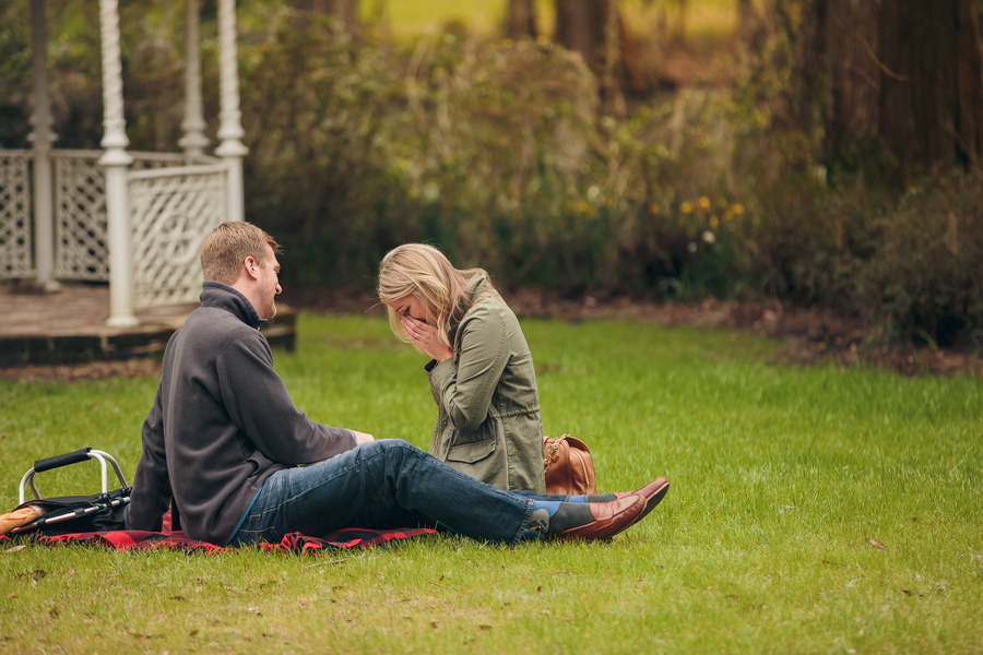 picnic proposal ideas28_low