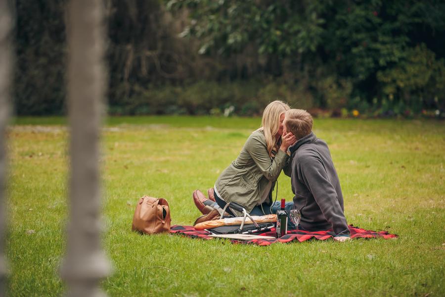 picnic proposal ideas31_low