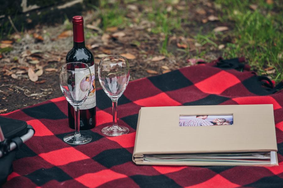 picnic proposal ideas_low