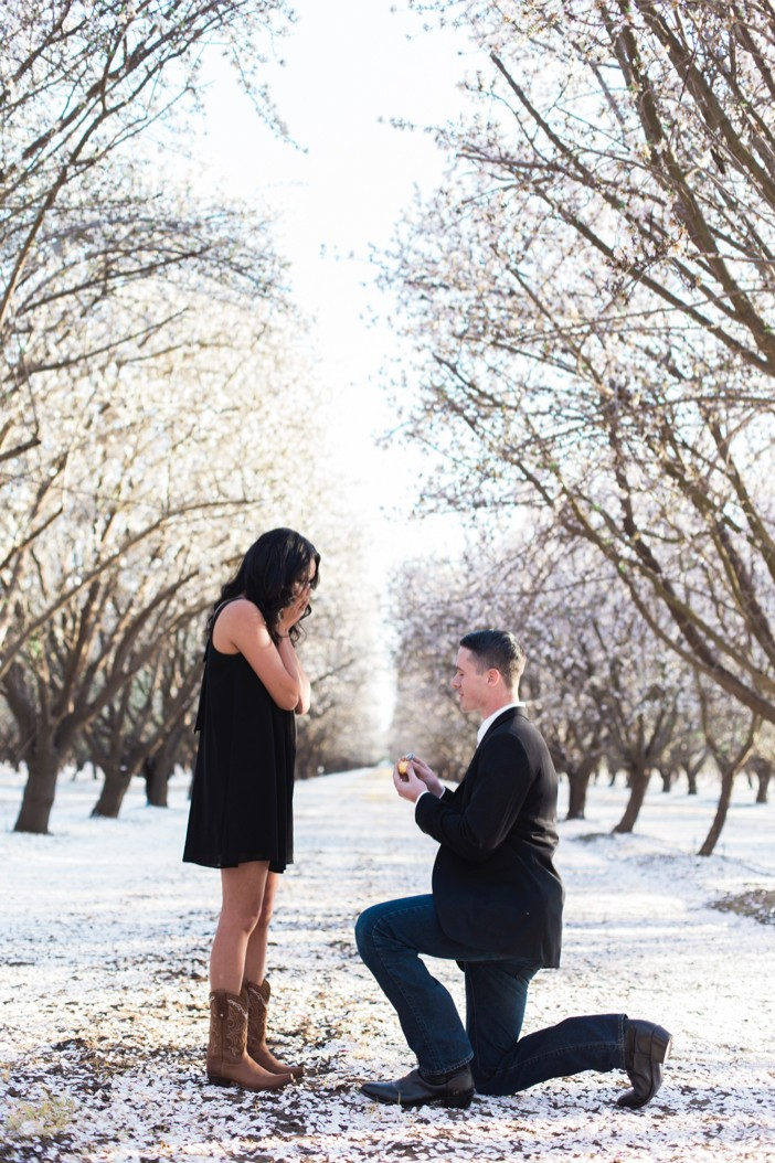 professional proposal photography _957