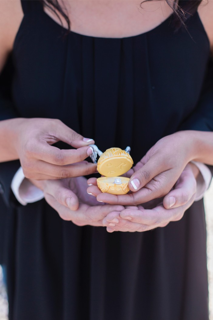 professional proposal photography _974