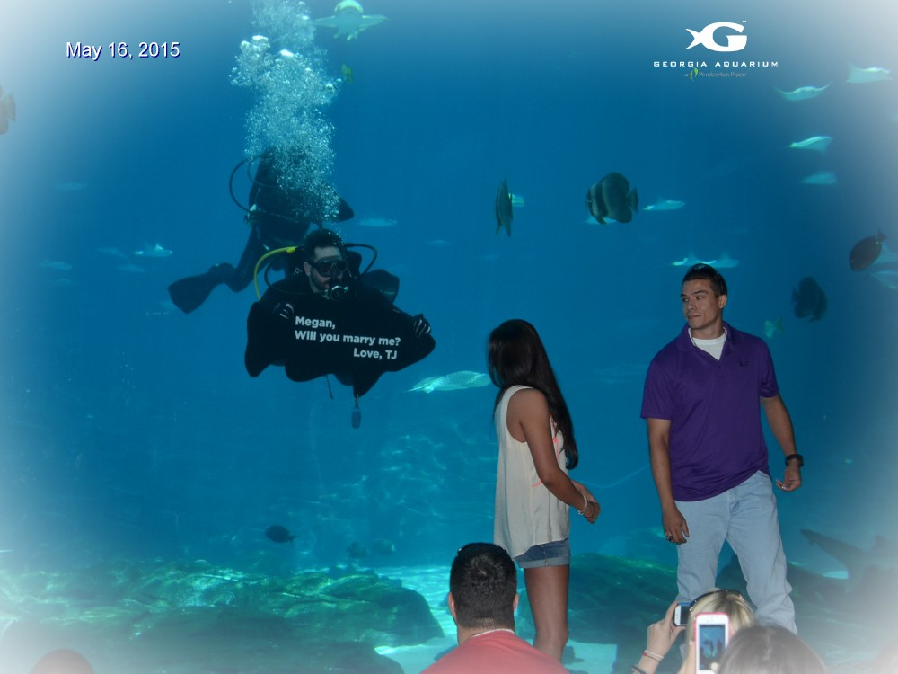 Image 1 of Megan and TJ's Georgia Aquarium Proposal