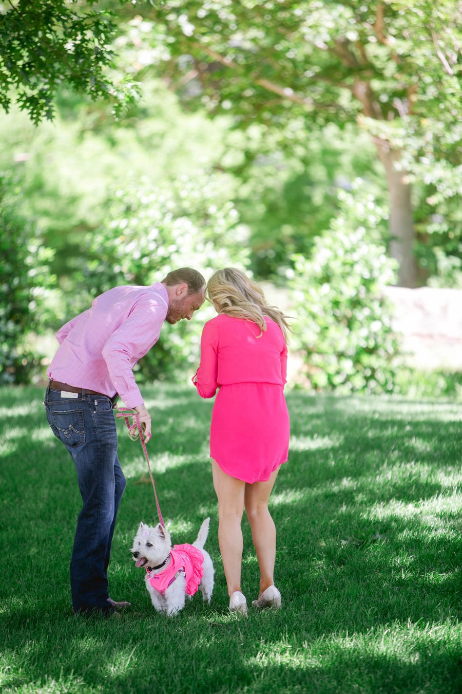 Dog Themed Marriage Proposal_007