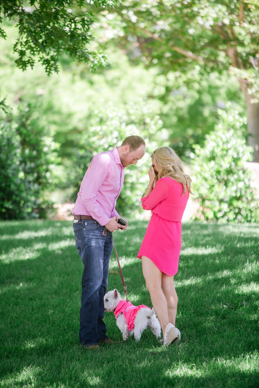 Dog Themed Marriage Proposal_013