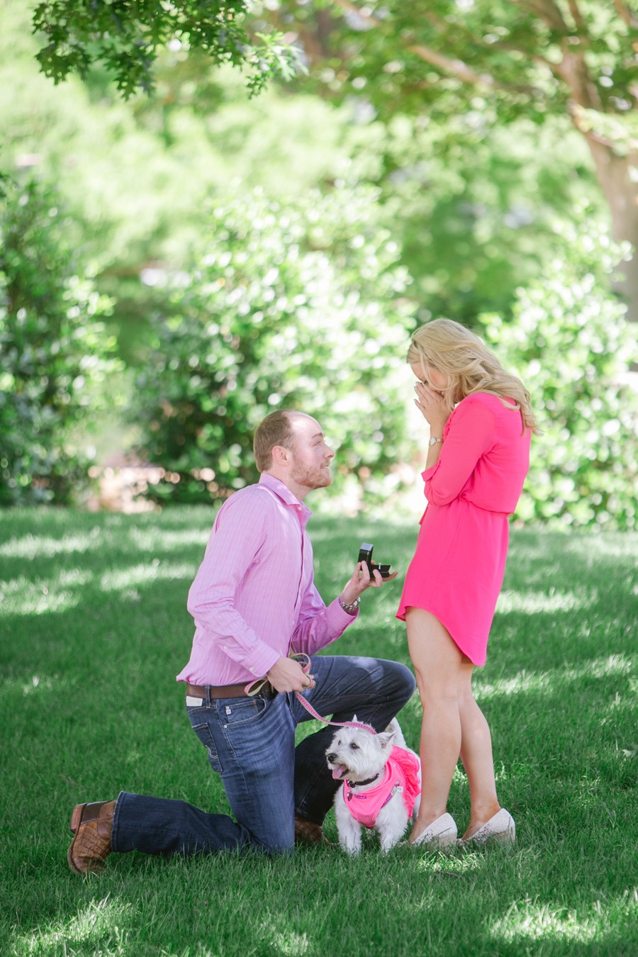 Dog Tag Marriage Proposal