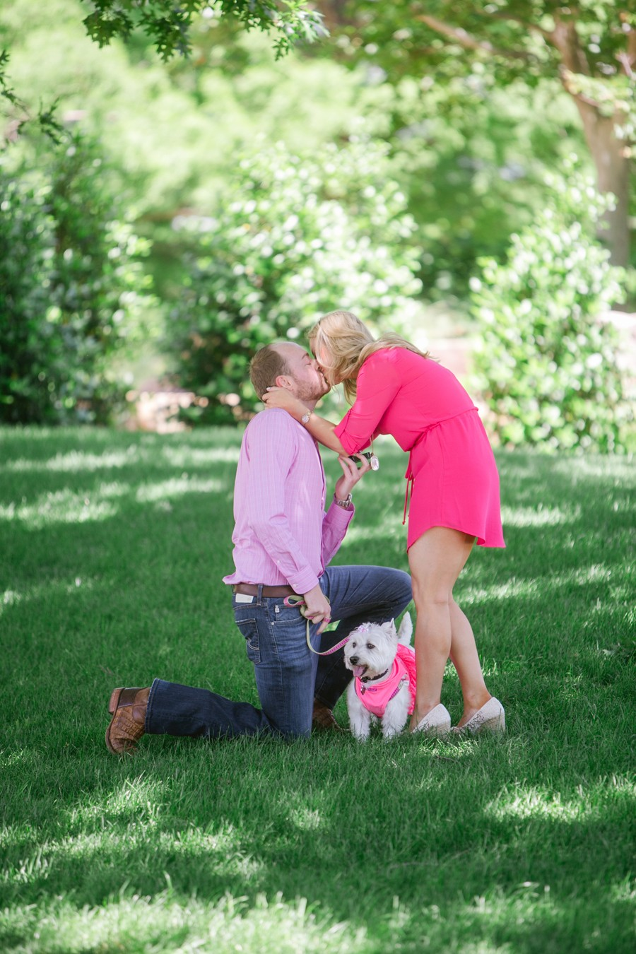 Dog Themed Marriage Proposal_022