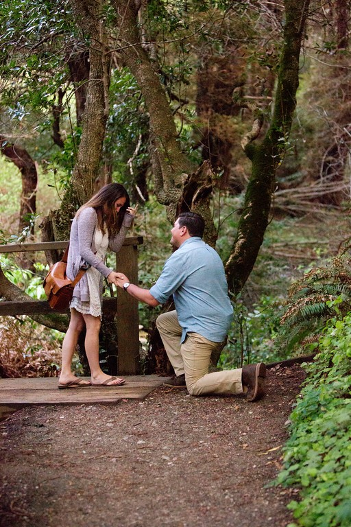 Image 3 of Drew and Cori's Big Sur Proposal
