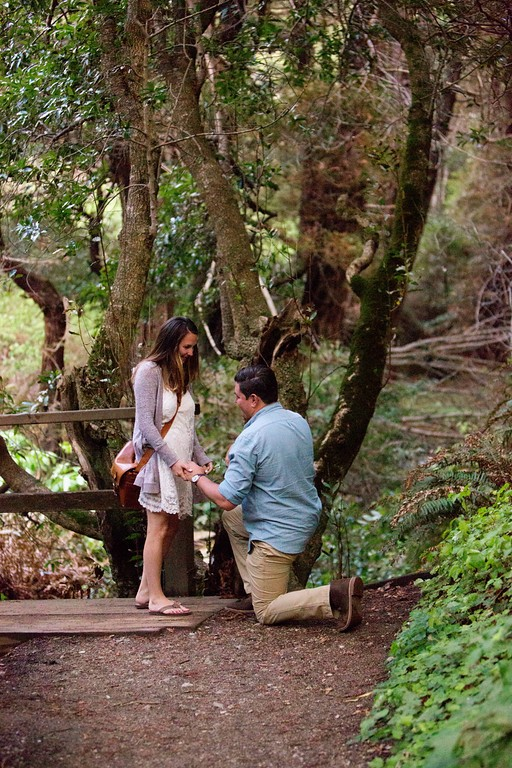 Image 4 of Drew and Cori's Big Sur Proposal