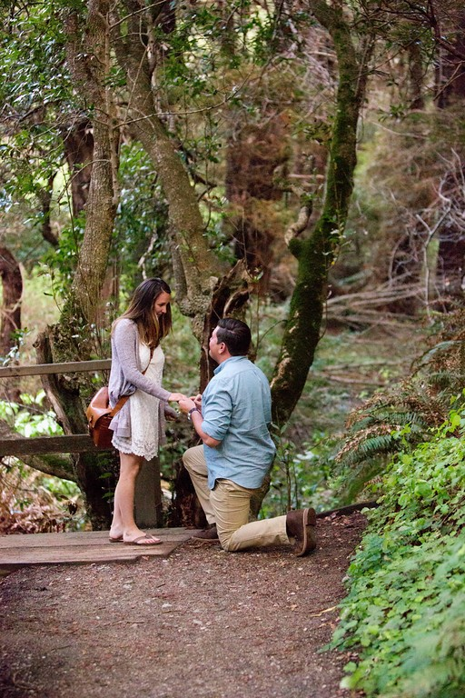 Image 5 of Drew and Cori's Big Sur Proposal