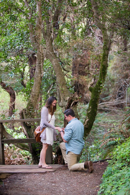 Image 6 of Drew and Cori's Big Sur Proposal