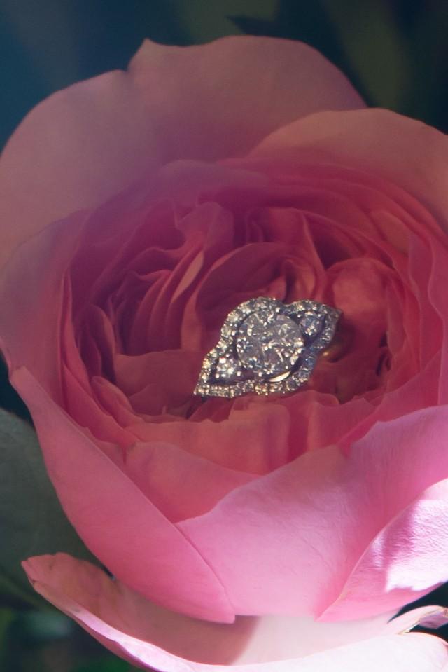 Lauren and Chris's Texas Marriage Proposal_4