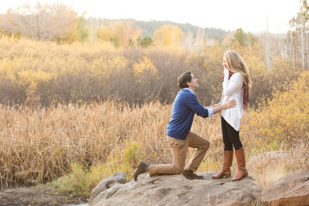Image 6 of Surprise Proposal in the Woods