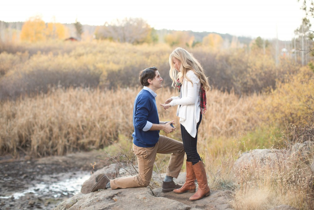 Image 7 of Surprise Proposal in the Woods