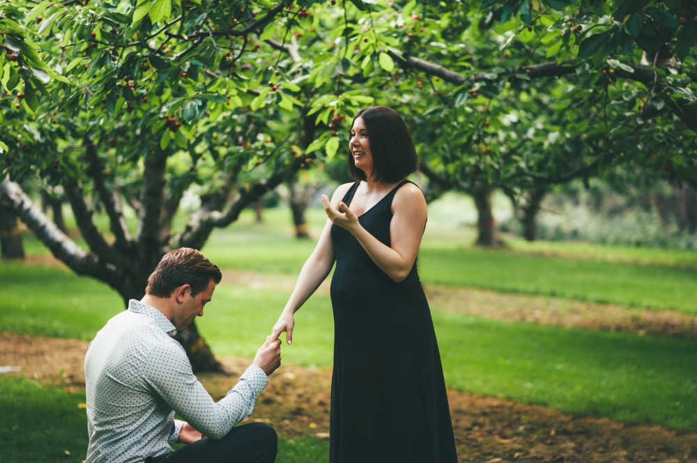 Image 7 of Surprise Proposal during Maternity Shoot