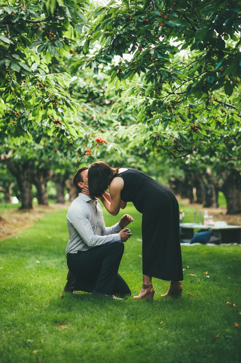Cherry Orchard Surprise Marriage Proposal (5)